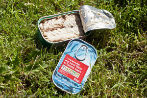 Tinned Mackerel