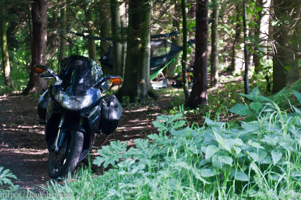 The Ape decided to hang out in te woods with me last night. Great little spot!